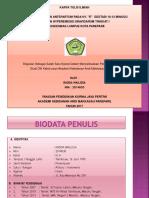 Radda Hypermesis