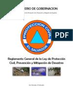 Reglamento de la Ley de Proteccion Civil.pdf