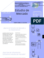 Estudio de Mercado Diapositivas PDF