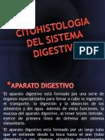 CITOHISTOLOGIA DEL SISTEMA DIGESTIVO