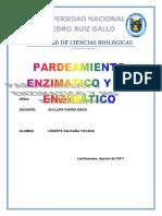 PARDEAMIENTO eN.docx