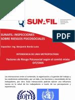 Seminario-Sunafil-Inspecciones-sobre-riesgos-psicosociales - 2016.pdf