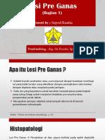 DM 1 Lesi Pre Ganas - Sayed Rustia (REVISI)
