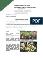 Plantas Ancestrales del Ecuador