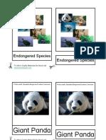 montessori card_animales