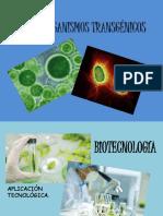 MICROORGANISMOS TRANSGÉNICOS