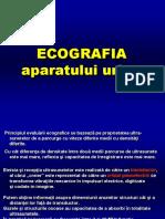Ecografia AP Urinar Microcurs