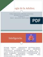 Psicologia Adultez