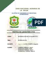 257338331-informe-2-ESTERILIZACION.doc