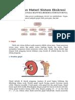 Rangkuman Materi Sistem Ekskresi.doc
