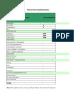 Ejemplo de Presupuesto y Cronograma (1)