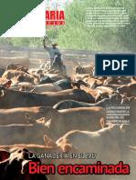 Pecuaria y Negocios - Ano 14 - Numero 161 - Diciembre 2017 - Paraguay - Portalguarani