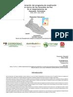 Implementacion_del_programa_de_sustituci (2).pdf