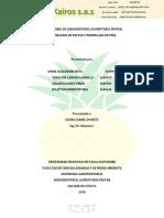 3 INFORME DE FRUVER MERMELADA PIÑA objetivos.docx