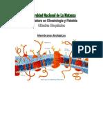 membranas plasmaticas