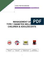 Draft_CPG_T1DM_301115.pdf