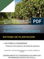GUÍA PARA LA PLANTACIÓN DE FRUTALES.pptx