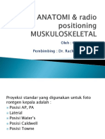 Radio Anatomi & Radio Positioning Muskuloskeletal Gamma