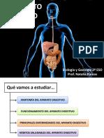 EL APARATO DIGESTIVO.pdf