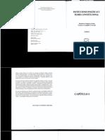 Instituciones Políticas y Teoría Constitucional (Cap. 1 a 3)