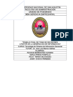 Trabajo Final de Tecnología de La Información Gerencial (Aporte de Jhair)