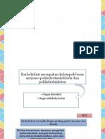Organik Karbohidrat.pptx
