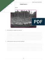 1º ensayo.pdf