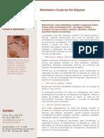 modalidades_due.pdf