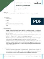 Practica de Laboratorio Decoloracion de Una Planta Cvm 2018