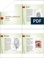 Anatomy and Physiology of the Eyes