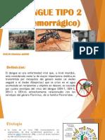 Dengue Tipo 2