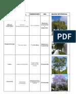 Ficha de Plantas y Arboles - Copia