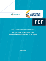 Lineamiento RPMS Version Consulta Pública