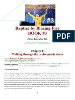 Book 3 Baptize by Blazing Fire