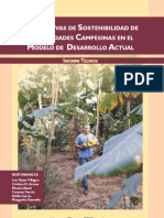 Perspectivas de Sotenibilidad de Comunidades - Luis Rojas Villagra - Ano 2017 - Portalguarani