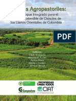 Sistemas_Agropastoriles llanos orientales oxisoles.pdf