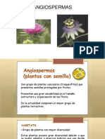 Taxonomia Vegetal