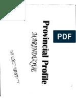 1995 Provincial Profile - Marinduque