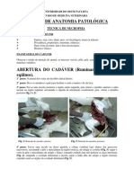 TECNICA_DE_NECROPSIA.pdf