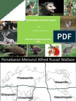 Pola Persebaran Fauna Di Dunia