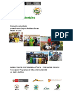 Instructivos Logros Ambientales_editado Dgp