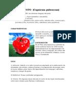 145926982-EL-ROCOTO (1).docx