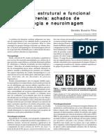 A anatomia estrutural e funcional da esquizofrenia achados de neuropatologia e neuroimagem.pdf