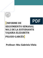 Pilozo Garcés - Informe 2
