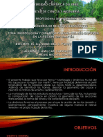 Deapositiva de Recurso Hidraulicos Rio Saposoa (1)