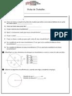 Ficha de Trabalho~circunferencia