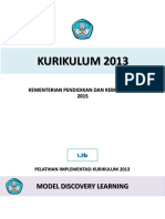 1.3b Model Discovery Learning