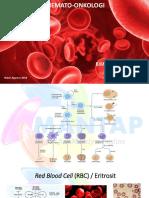 Teori Hemato Onkologi