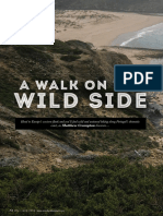 'A Walk on the Wild Side'