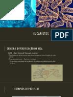 AULA 6 - Diversidade Eucariotos